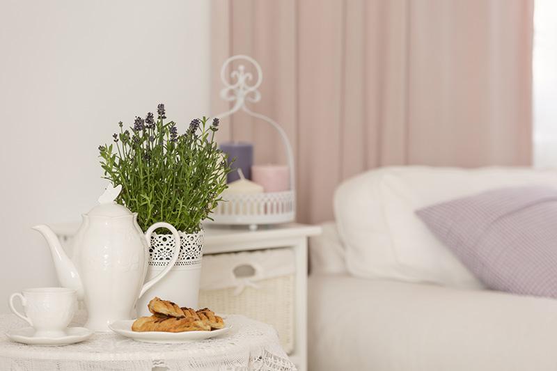 slaapkamer-plant